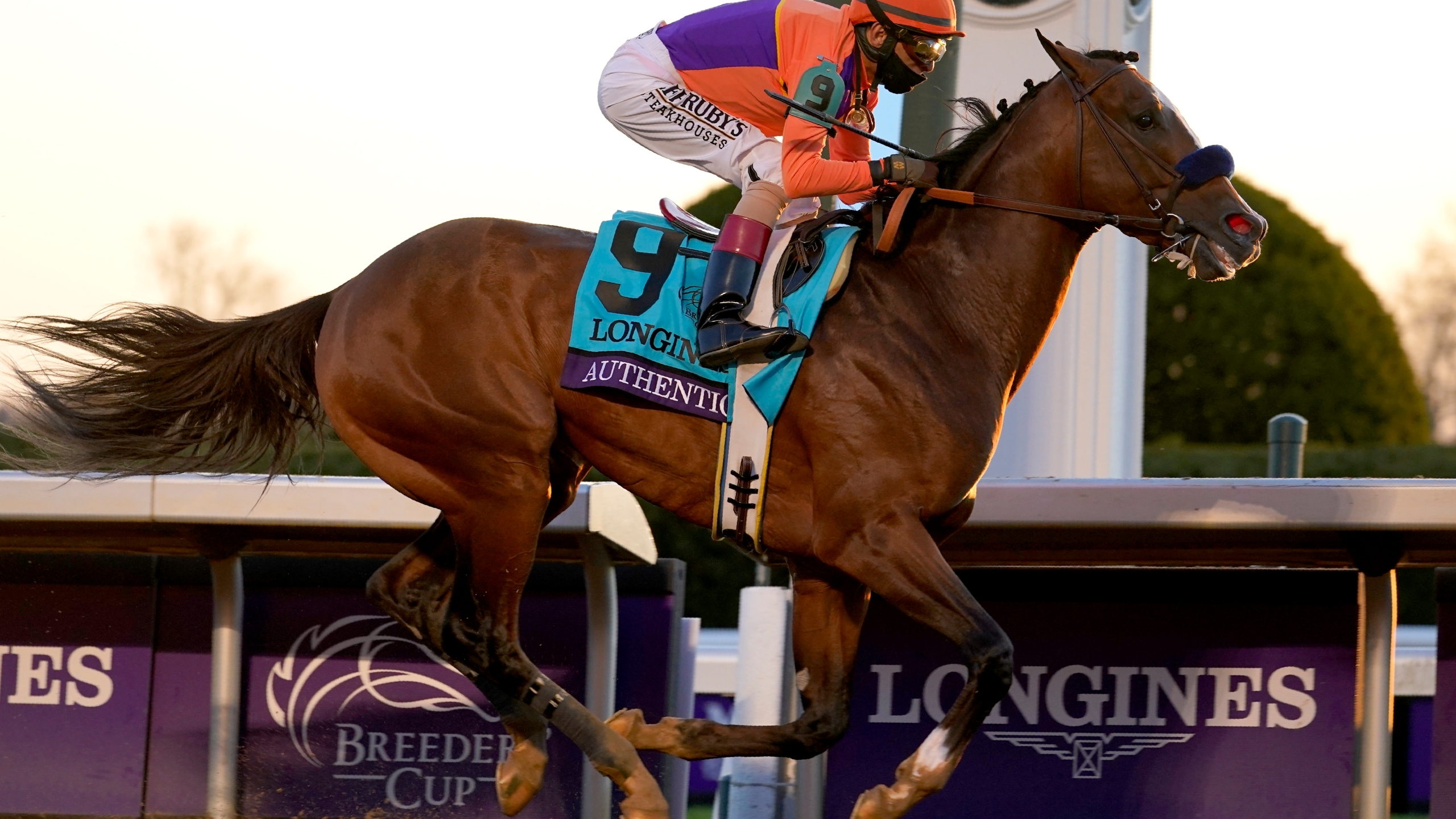HONOR A.P. ON COURSE FOR SANTA ANITA DERBY - Past The Wire